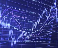 Когда и как проходят торги на валютной бирже
