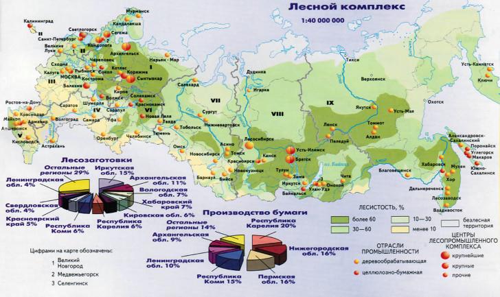 Лесной комплекс России География и факторы размещения