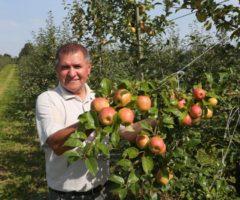Правила создания садоводческого совхоза