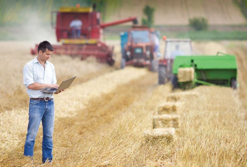 Реформирование агропромышленности в России
